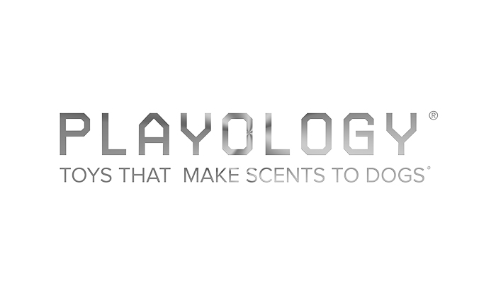 Playology Logo.jpg