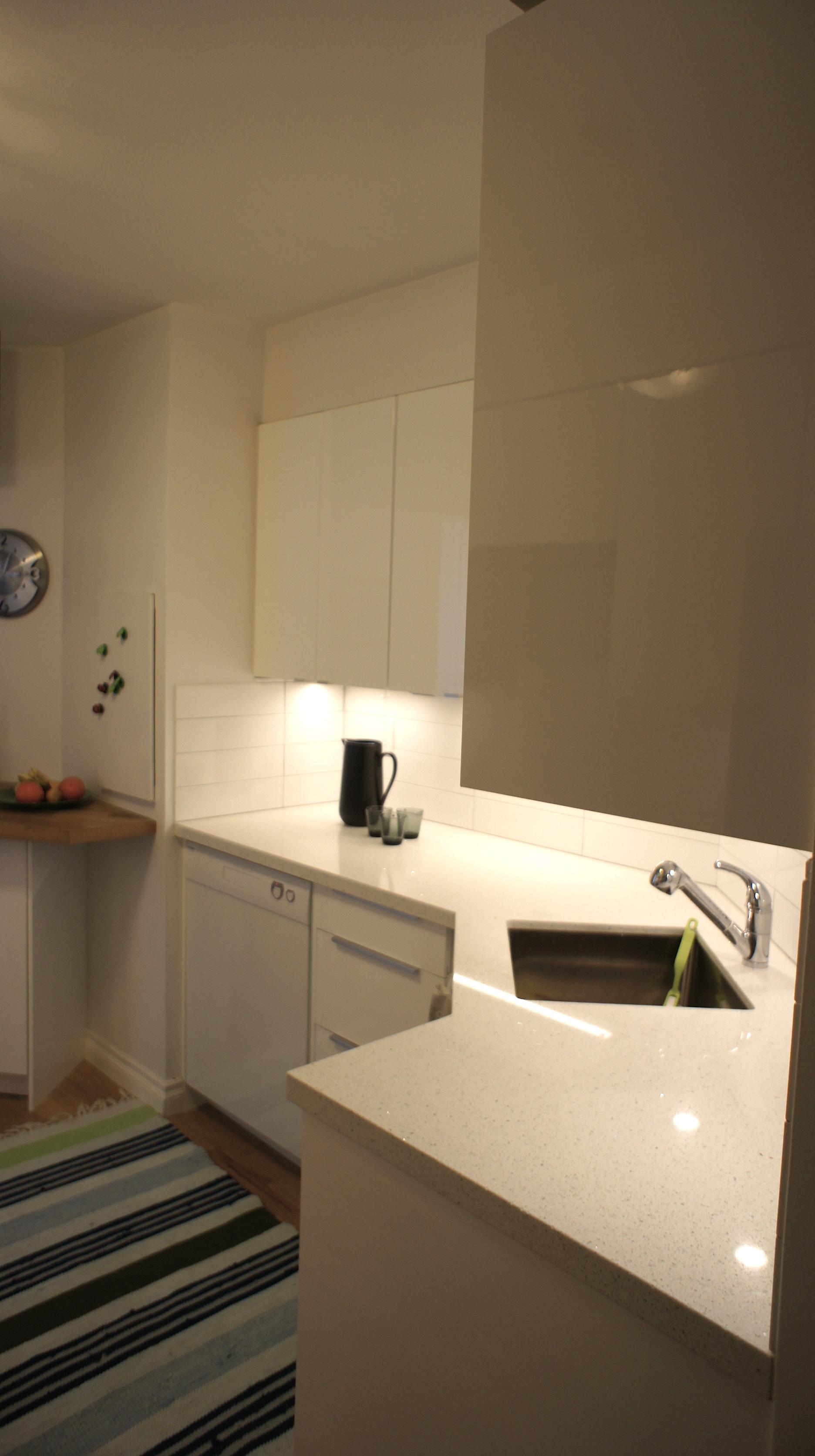 condo kitchen storage.jpg