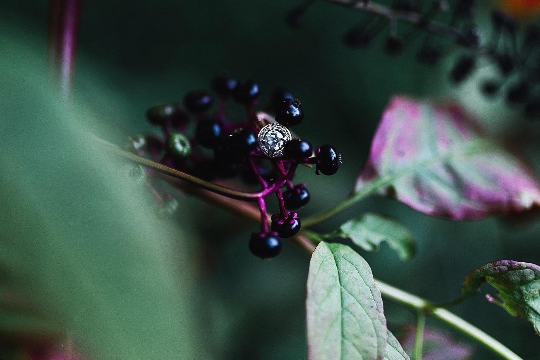 north-carolina-asheville-engagement-photographer-columbia-south-carolina-wedding-details-ring-1.jpg