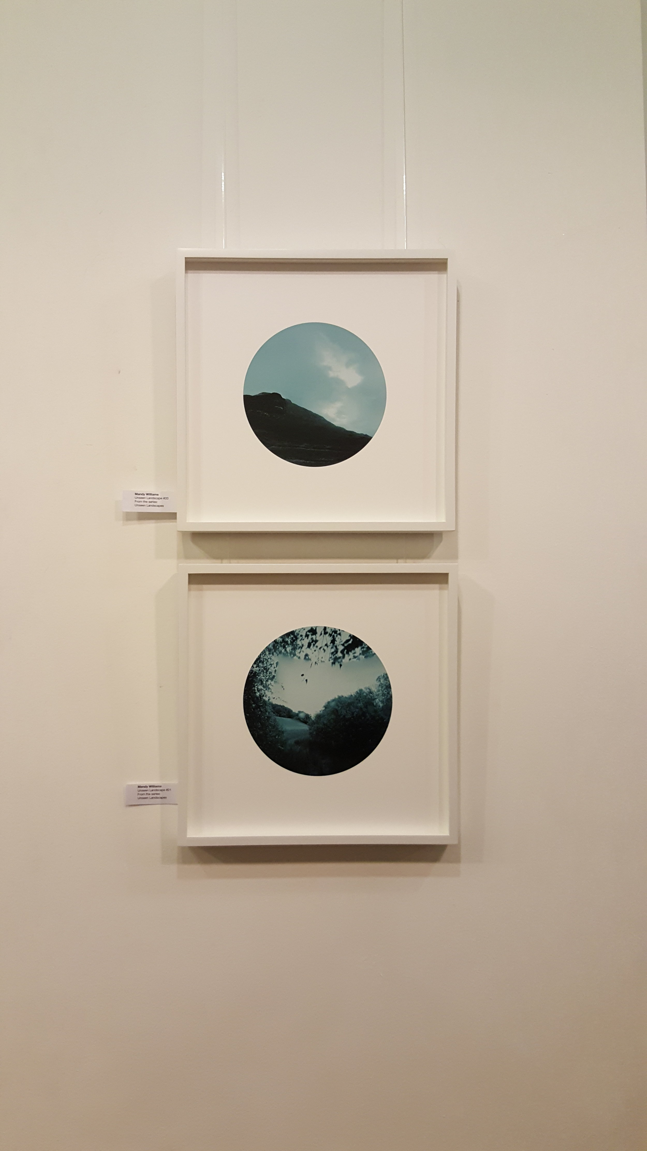 Mandy Williams, Unseen Landscapes