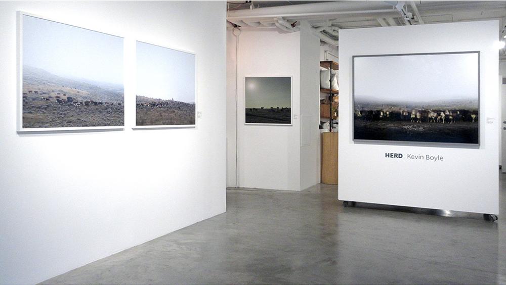 HERD (2017), Kimoto Gallery, Vancouver (photo credit Chris Fadden)