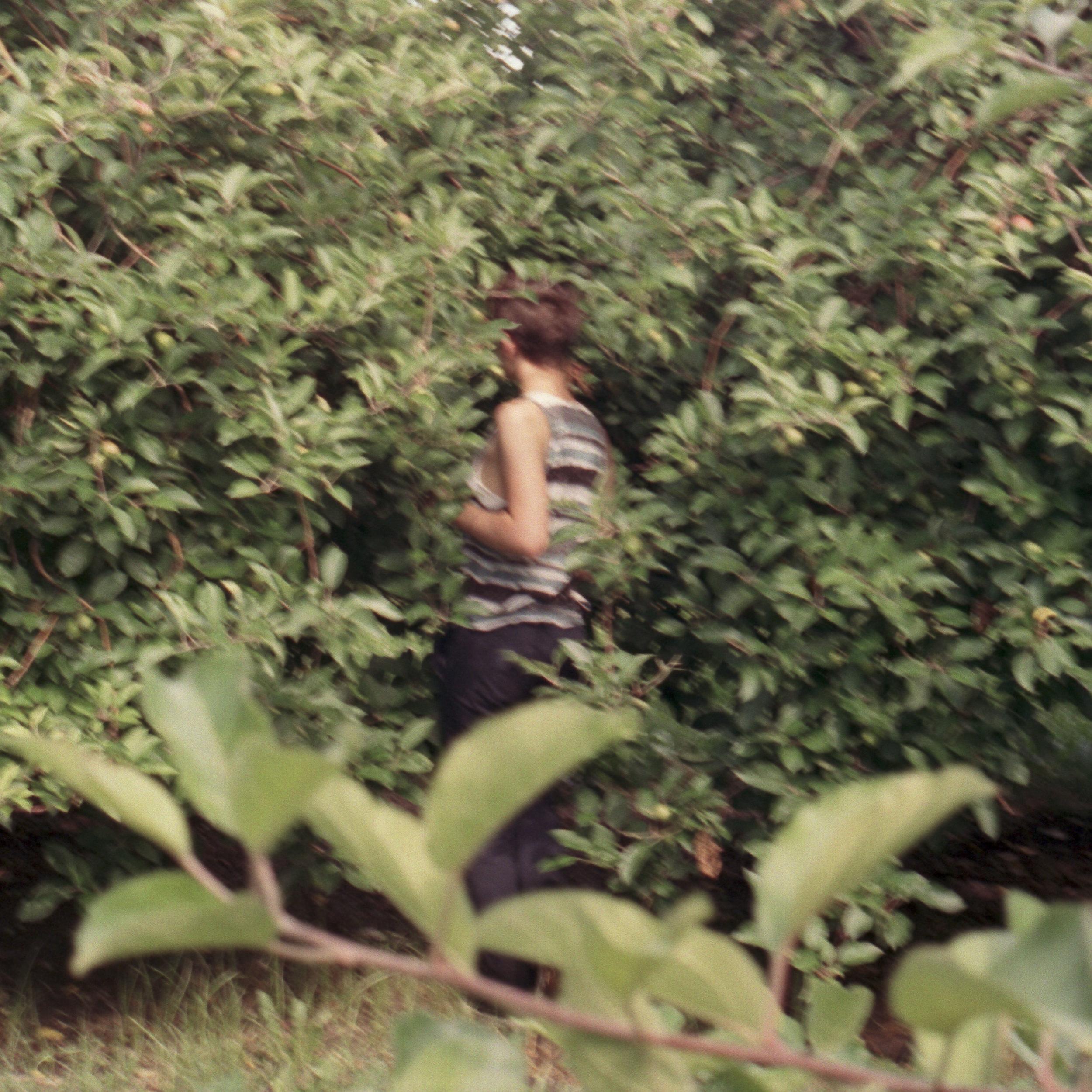 becca_trees_rochester.jpg