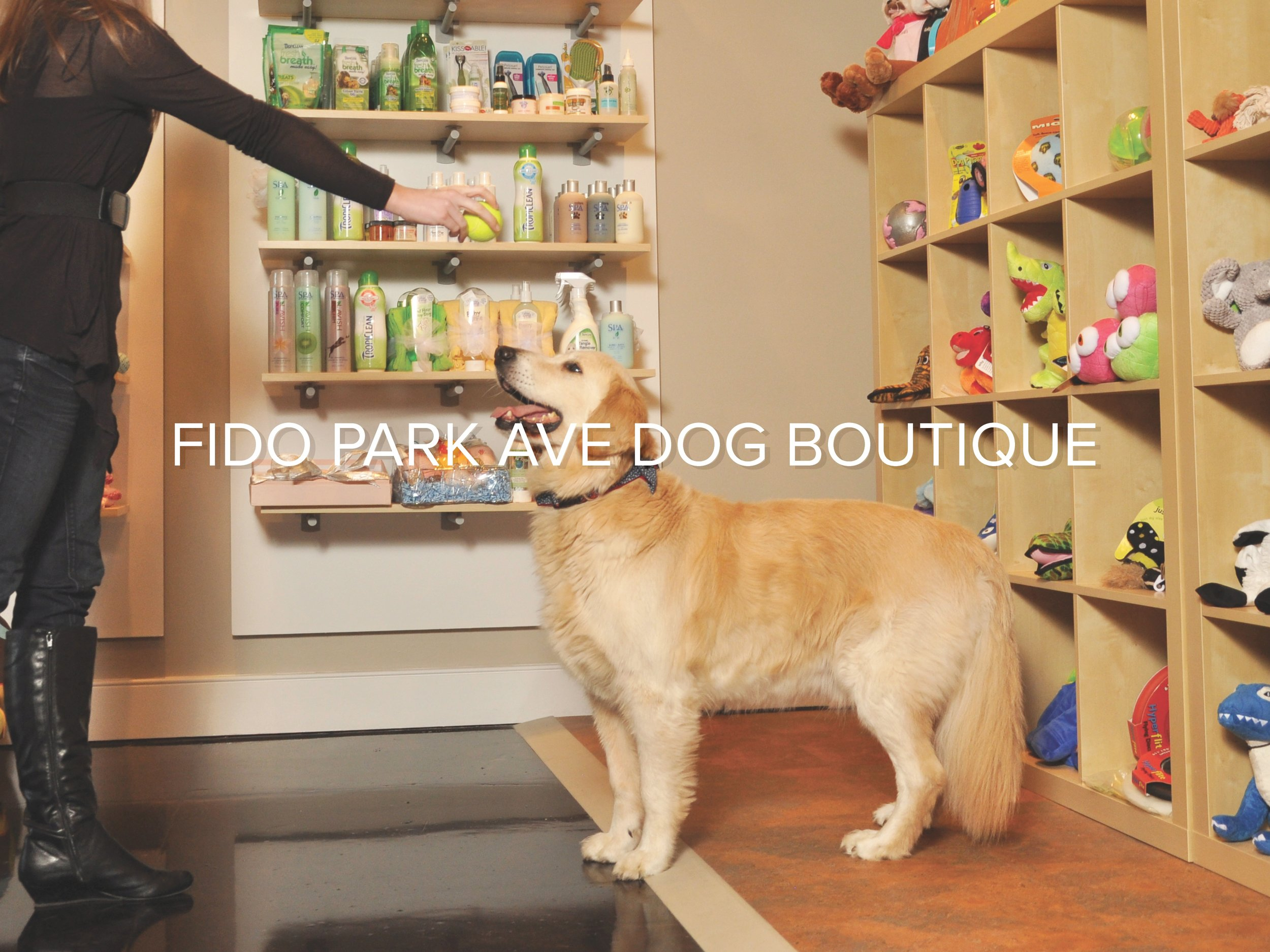 Fido Dog Boutique.jpg