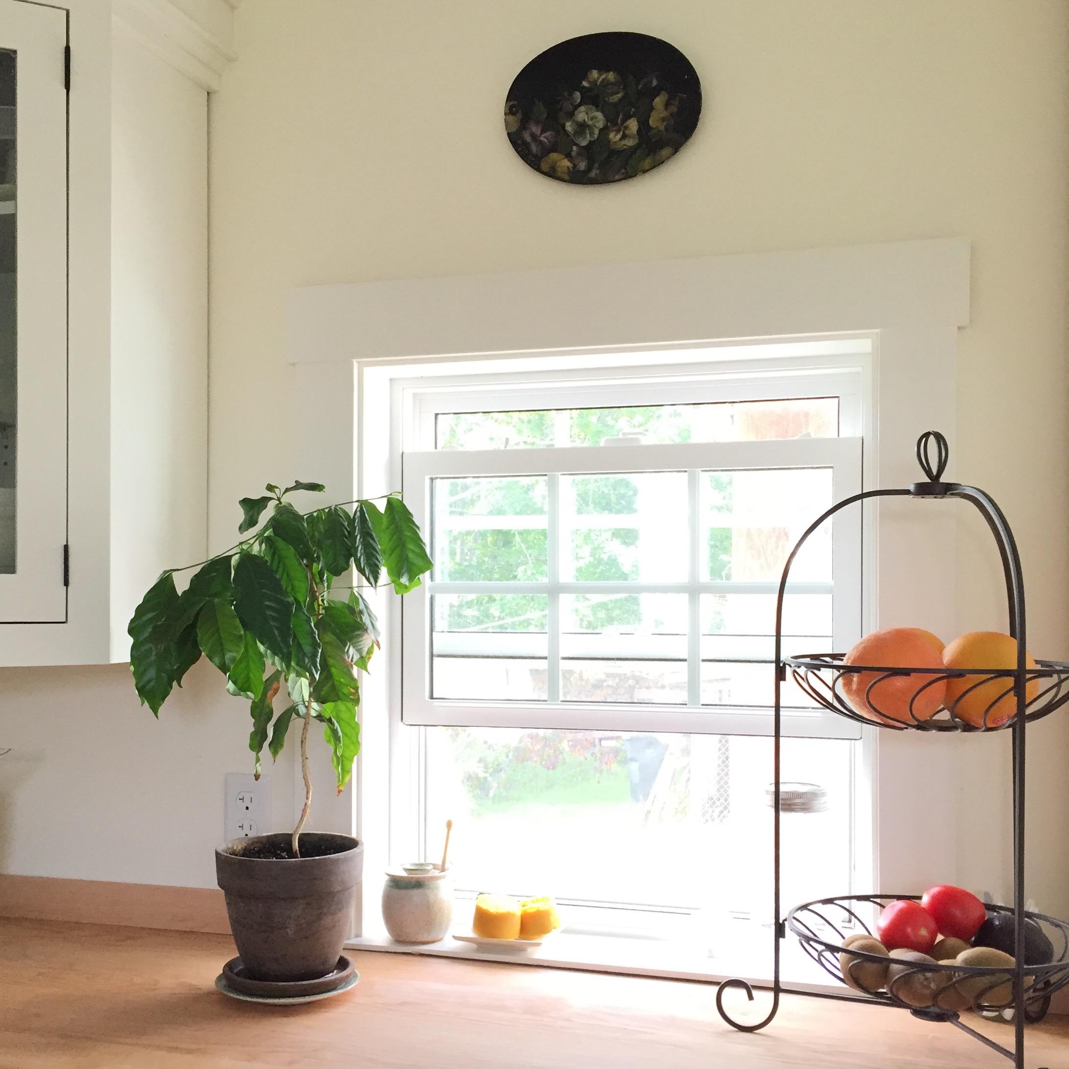 north window in kitchen after