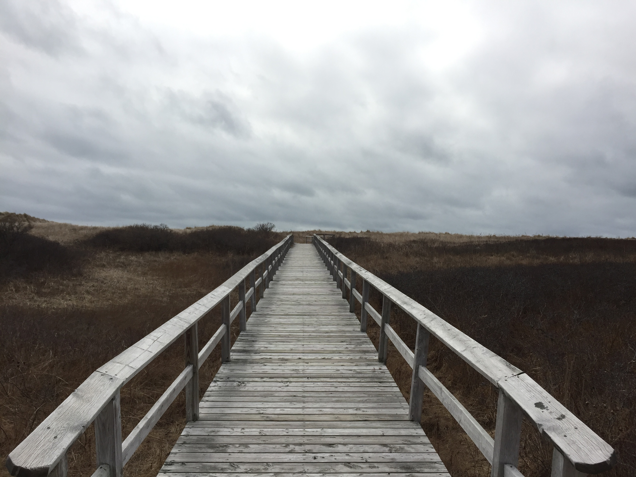 mavilette boardwalk