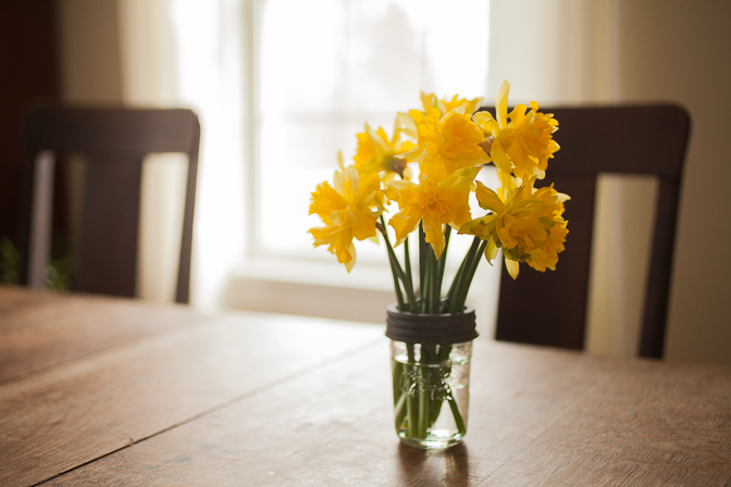 daffodils on table
