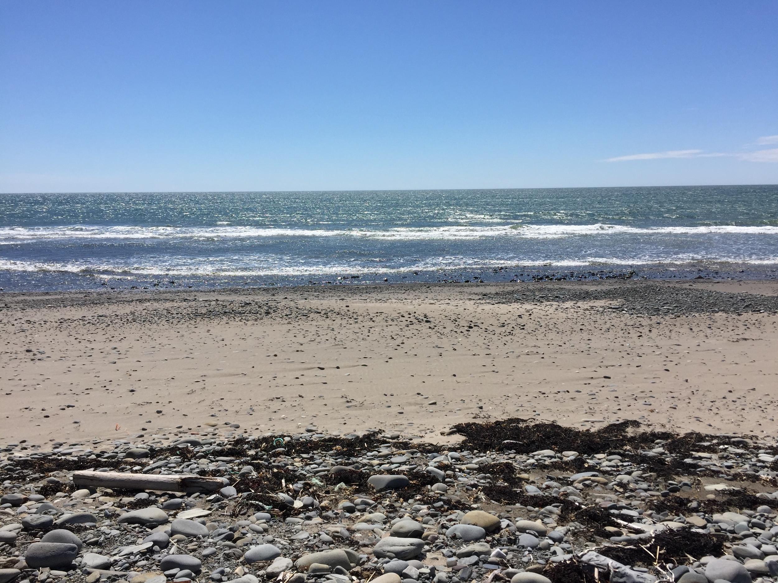 bartlett's beach