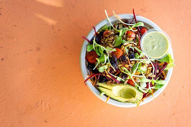 so fresh + so clean 😉 daily dose of veggies 🥬🥒🥕