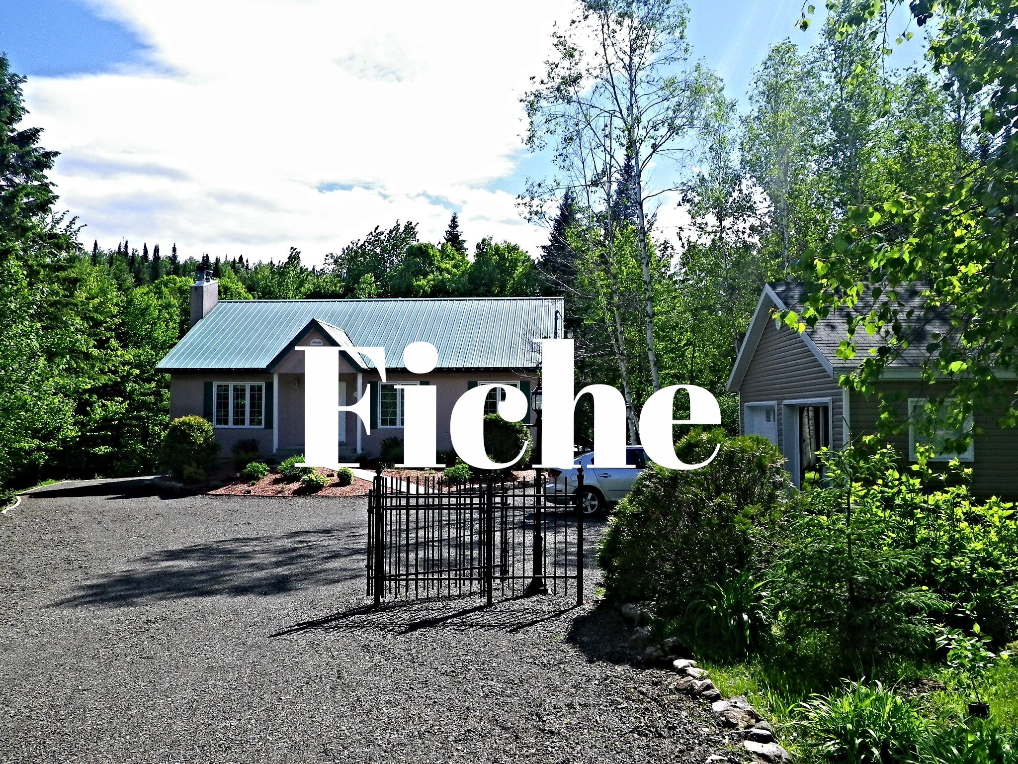 maison-à-vendre-293-chemin-des-lacs-lac-beauport-david-fafard-courtier-immobilier (3).JPG