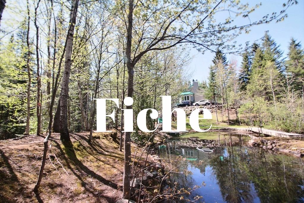 maison-à-vendre-293-chemin-des-lacs-lac-beauport-david-fafard+(28).jpg
