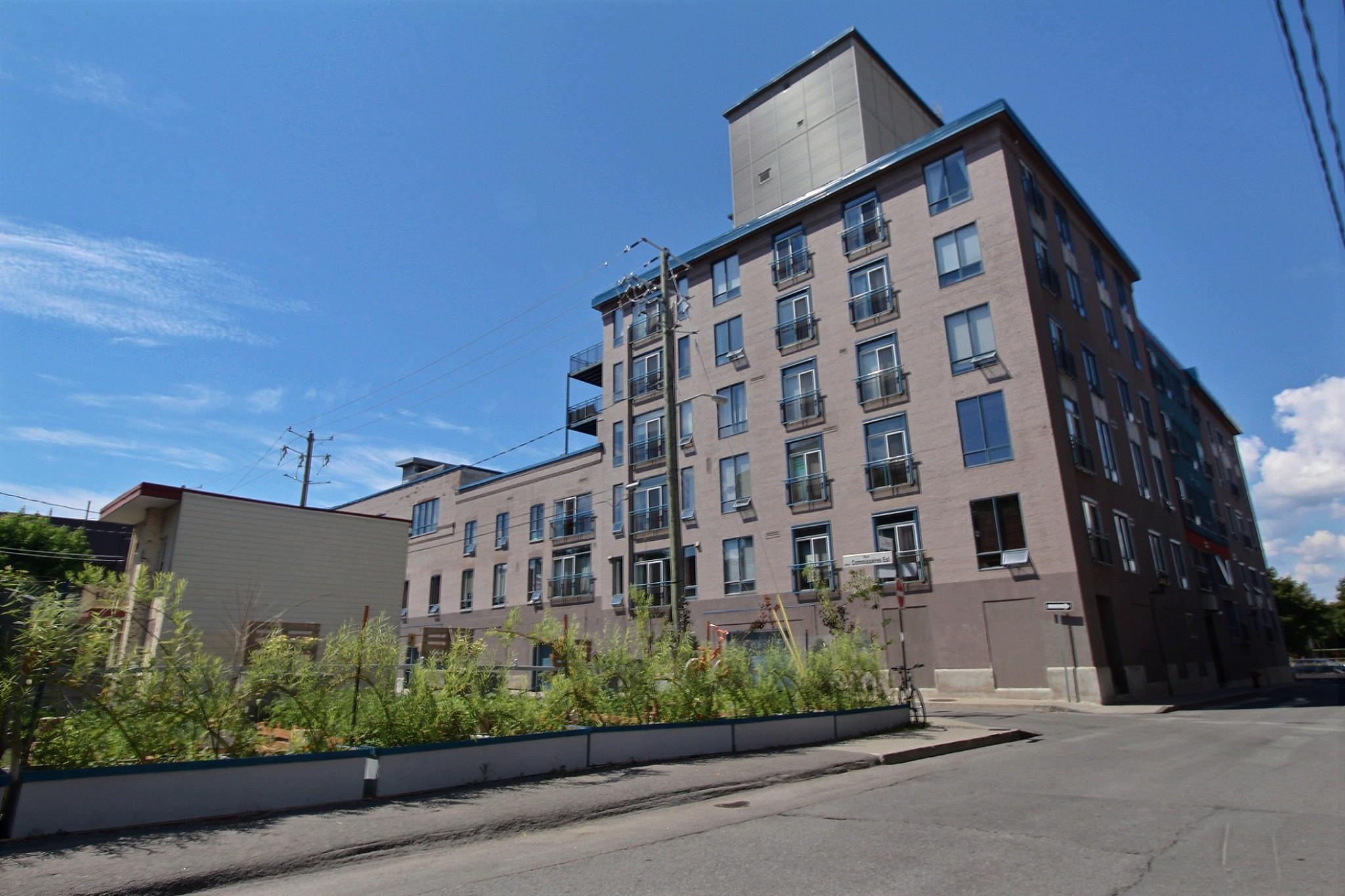 Loft Quebec a vendre 274 rue du parvis unite 304 (2).jpg