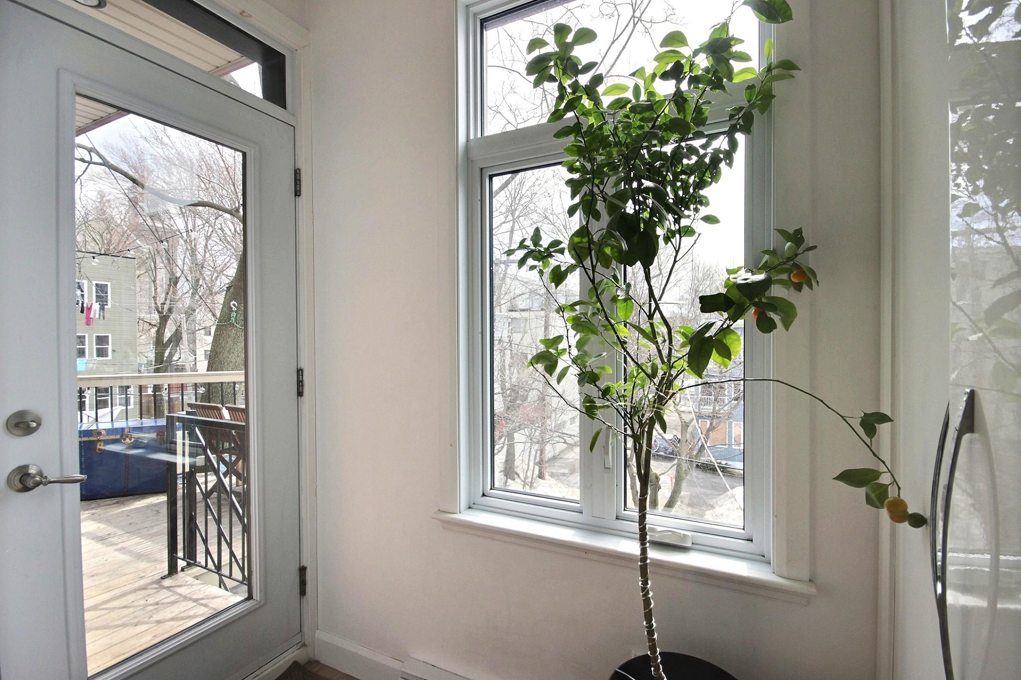 Triplex Montcalm Avenue Murray a vendre david fafard courtier immobilier (12).jpg
