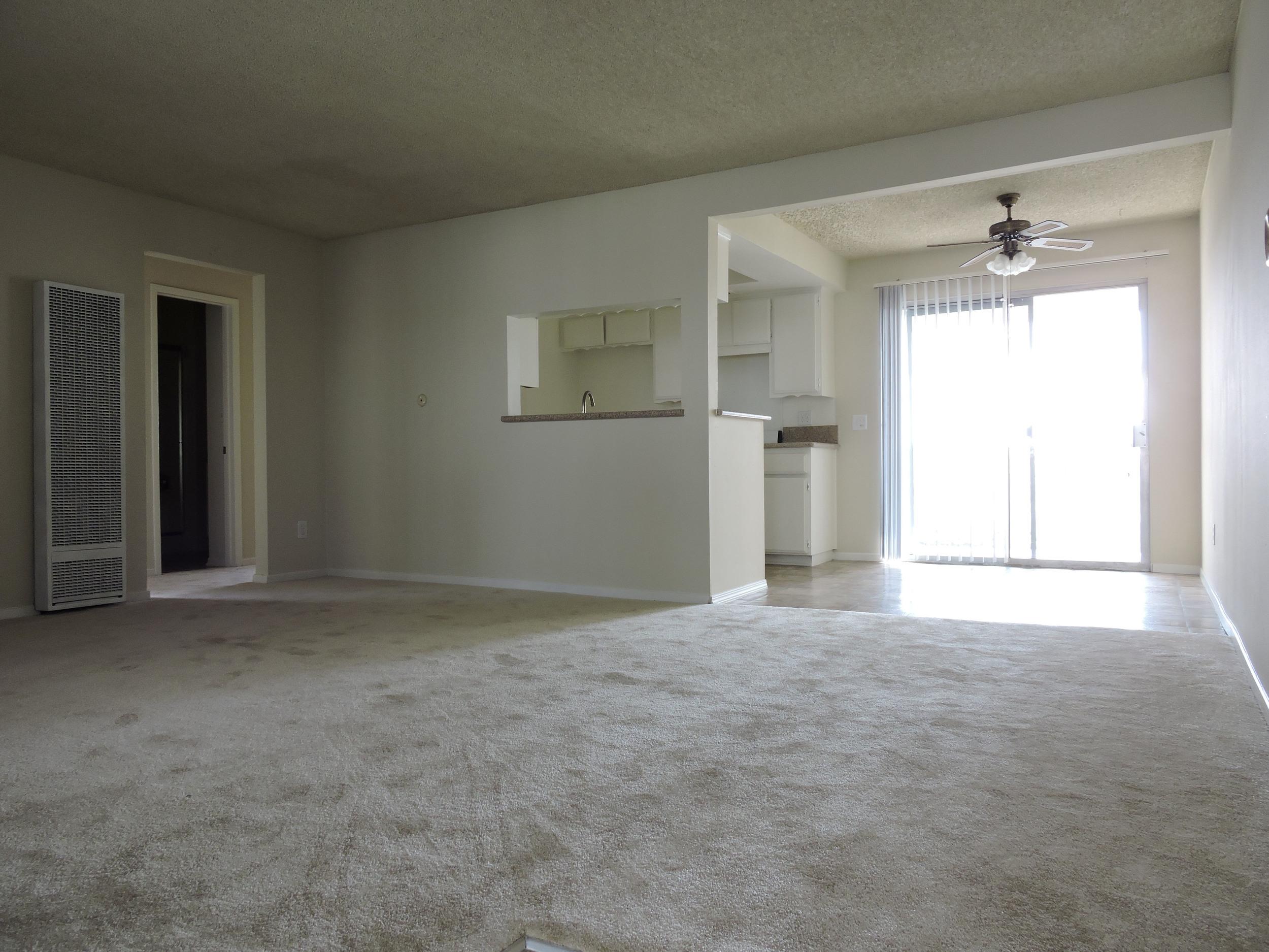 233 living room.jpg
