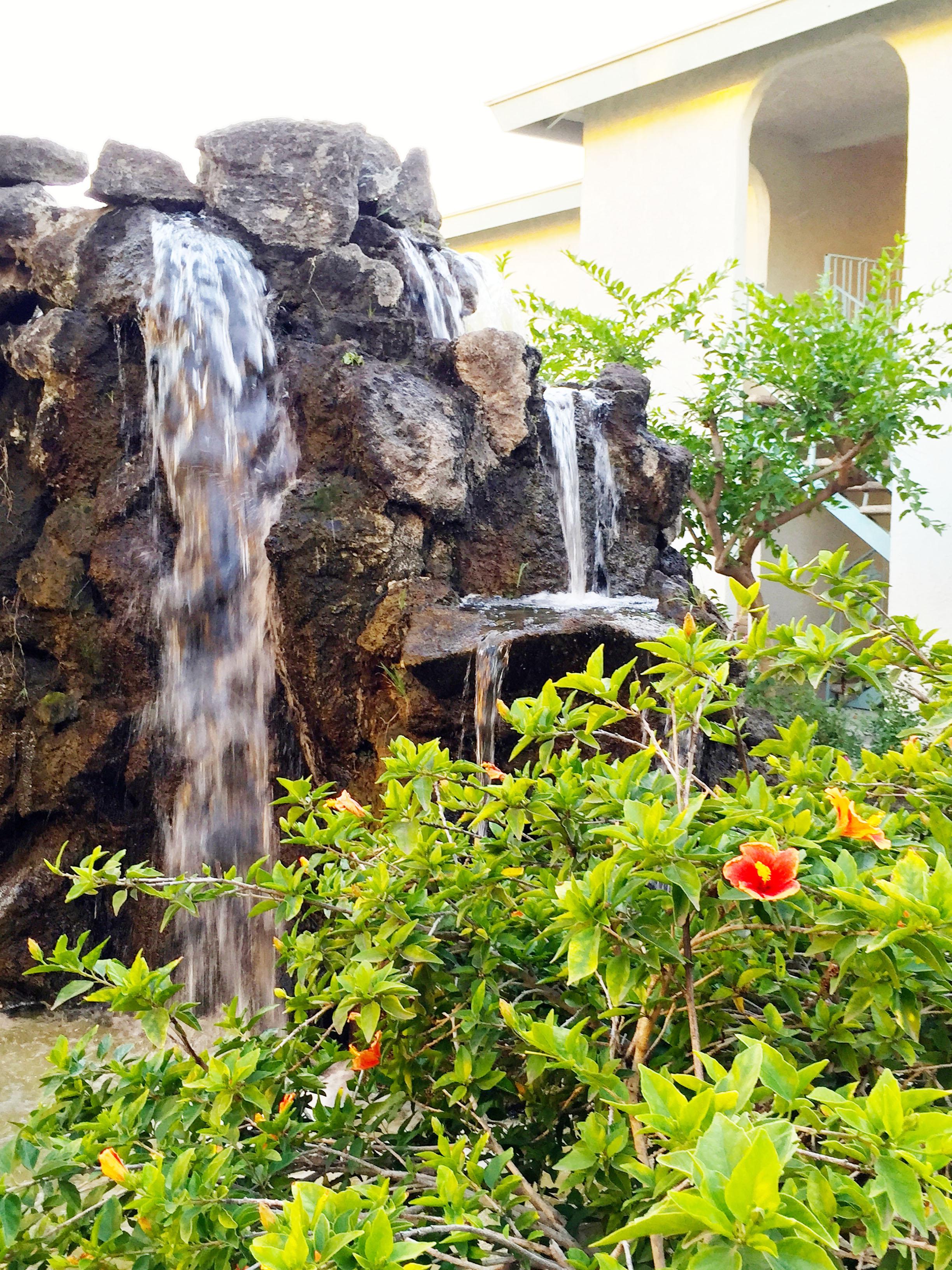 20 Hibiscus Fountainjpg copy.jpg