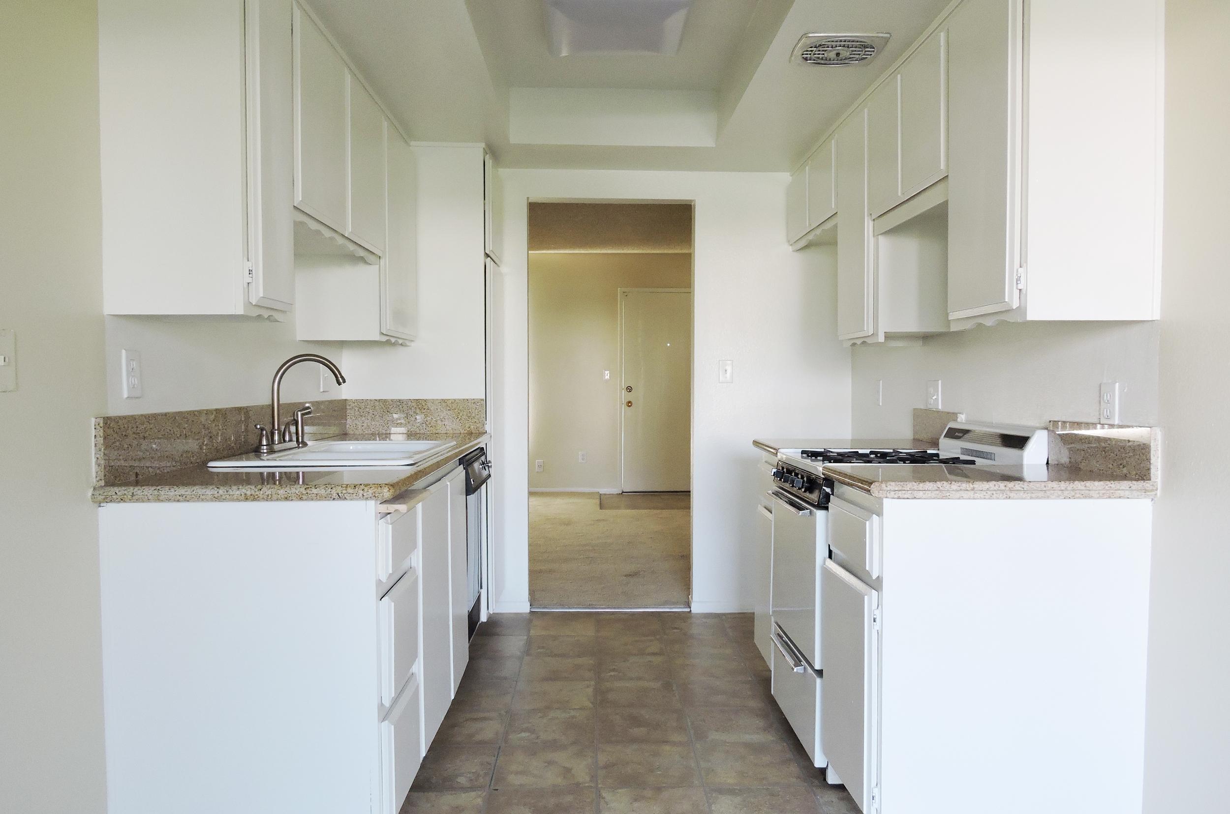 daisy kitchen 6.jpg