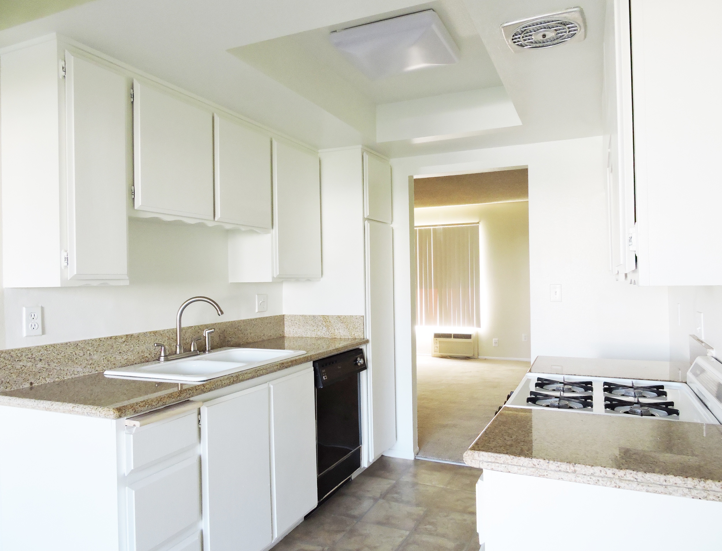 daisy kitchen.jpg
