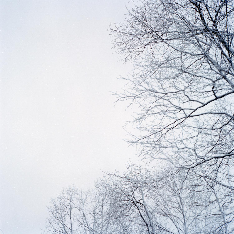 SeanDyroff_FilmScan_01-2.jpg