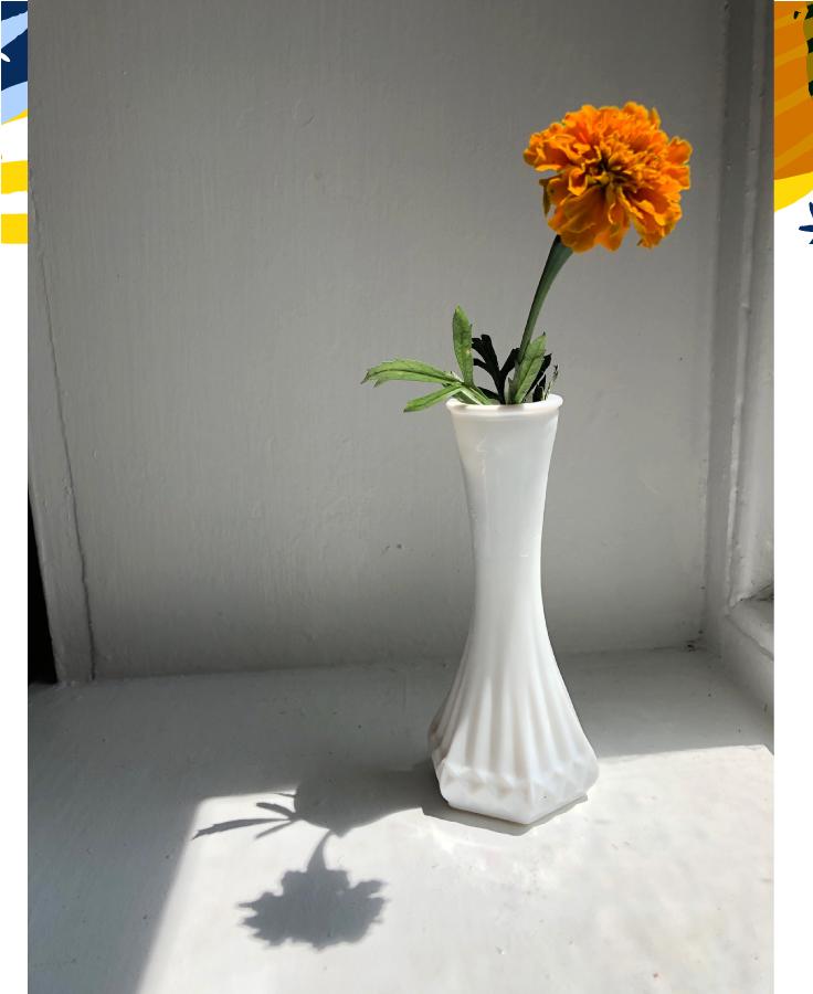 garden_marigold2.jpg