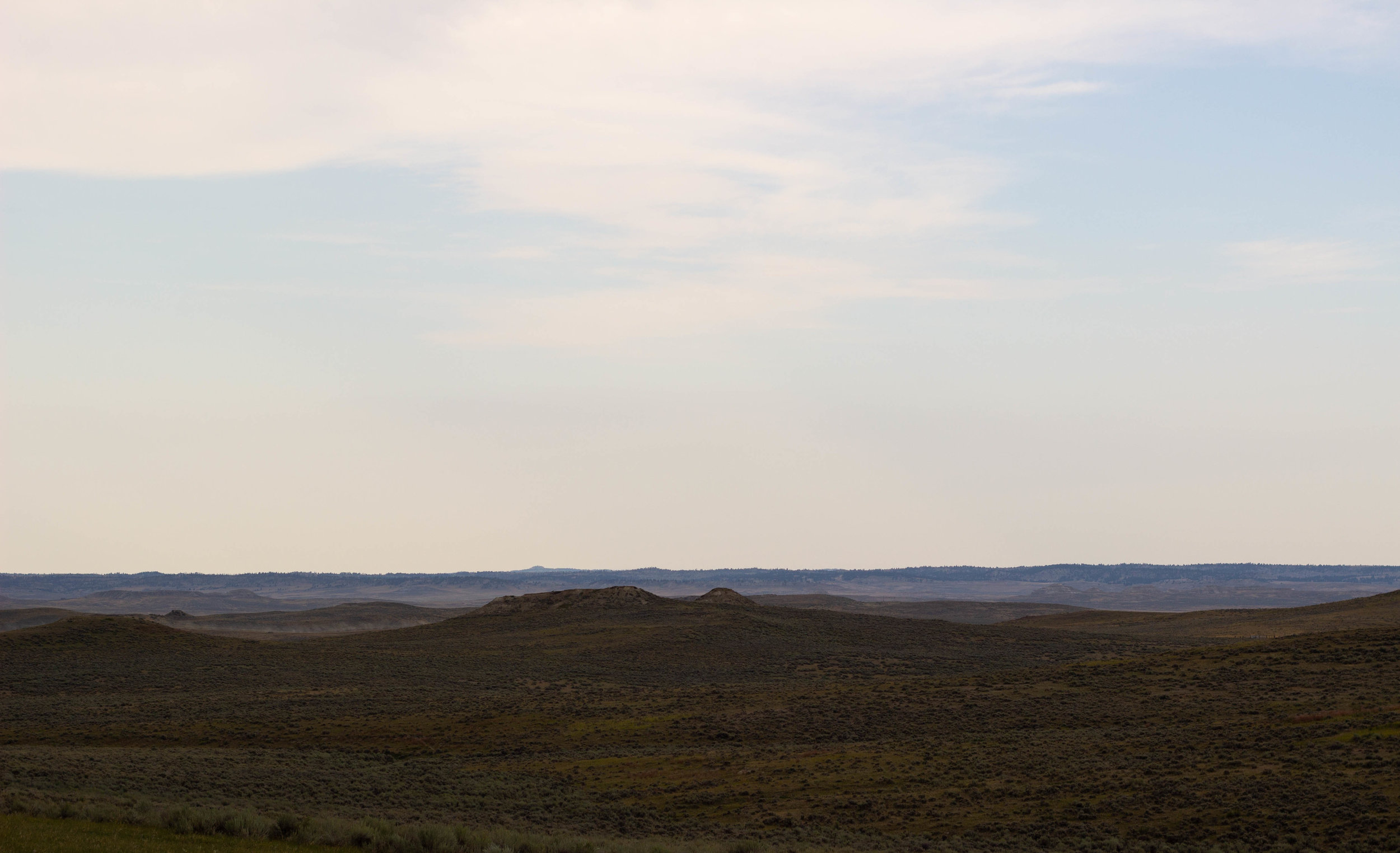 sage landscape.jpg