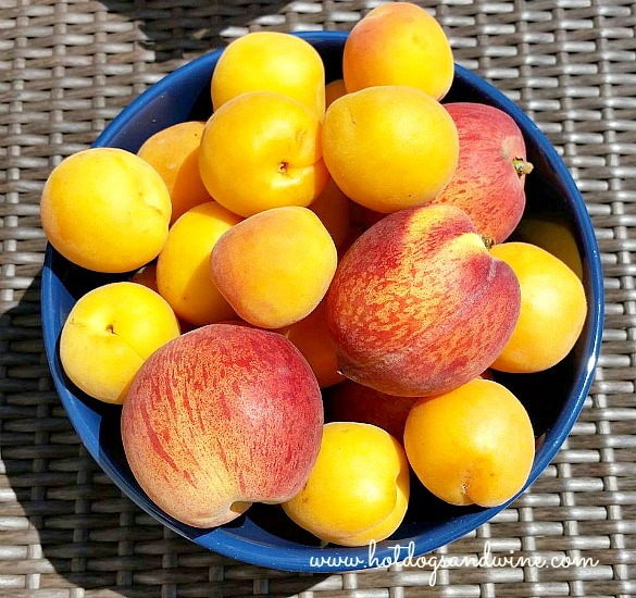 apricot jam1.jpg