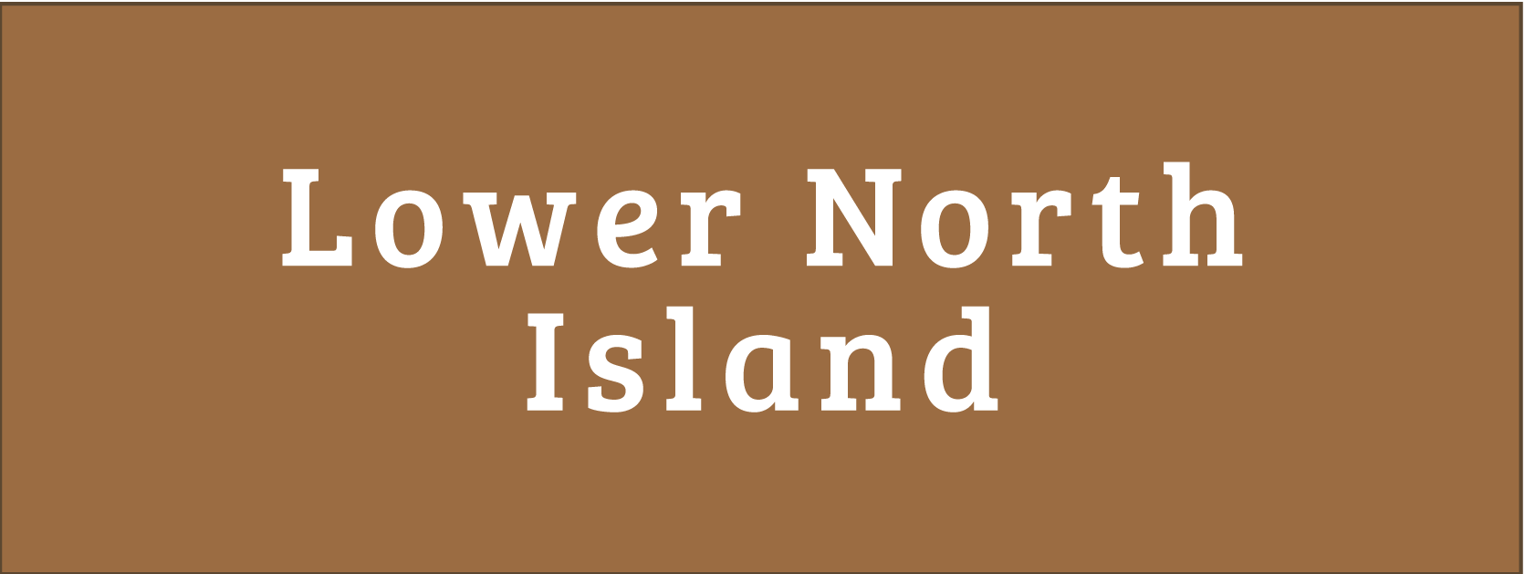 Lower North Island Areas for Disability Information Button