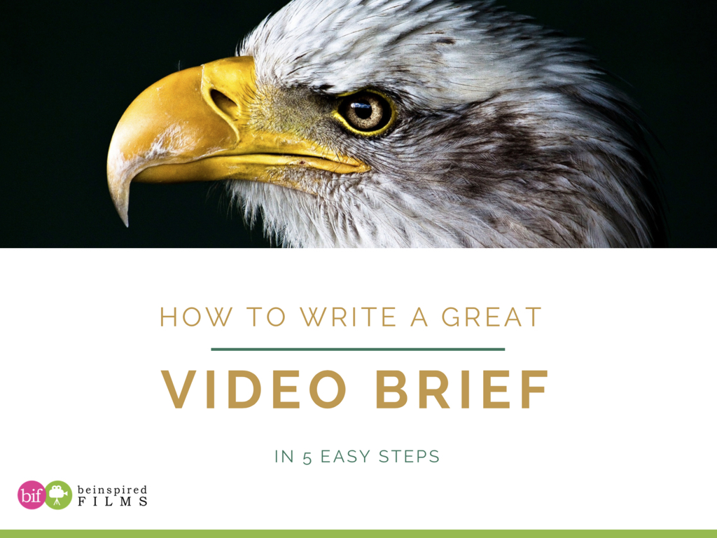 How to Write a Great Video Brief in 5 Easy Steps.001.jpeg