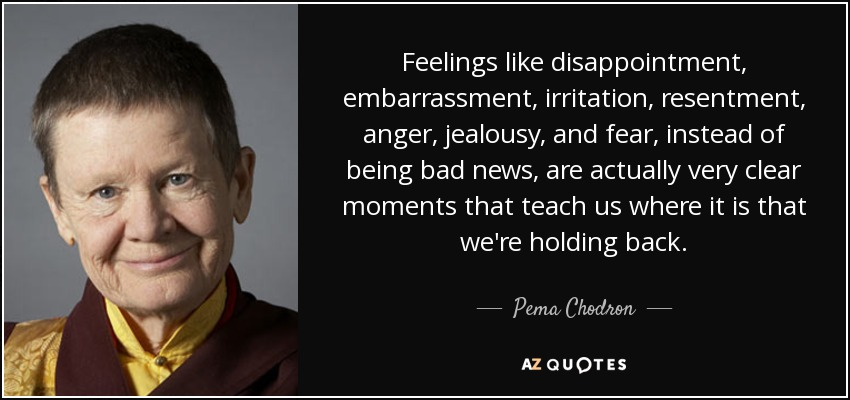 quote-feelings-like-disappointment-embarrassment-irritation-resentment-anger-jealousy-and-pema-chodron-56-34-61.jpg