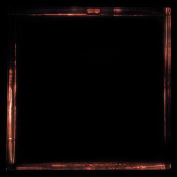 negrof22x17.jpg