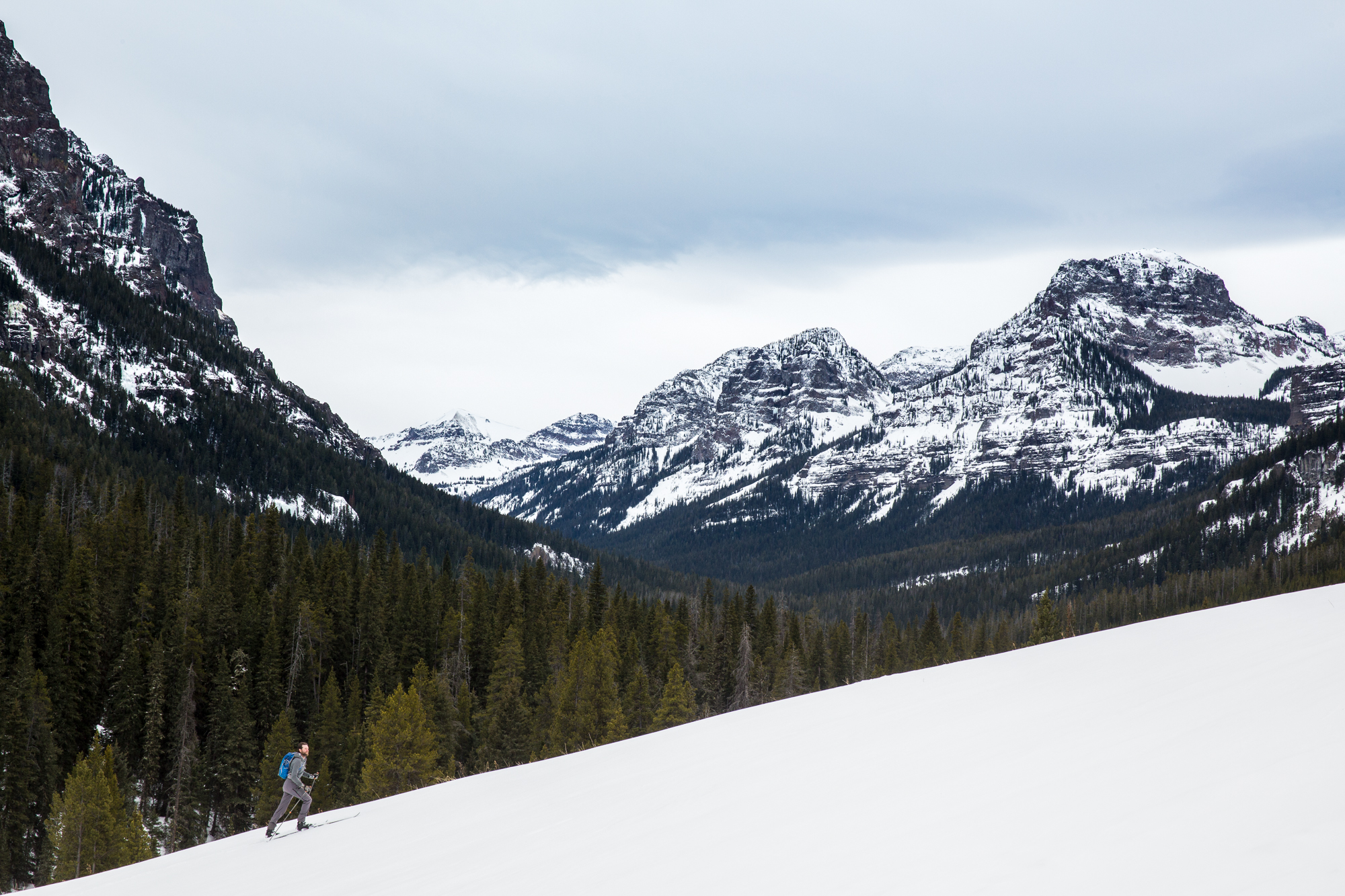 A skiier in Montana's Custer Gallatin National Forest. You can make your voice heard today, and make a difference in how this forest is managed for the next 20-30 years. (Photo Louise Johns.)
