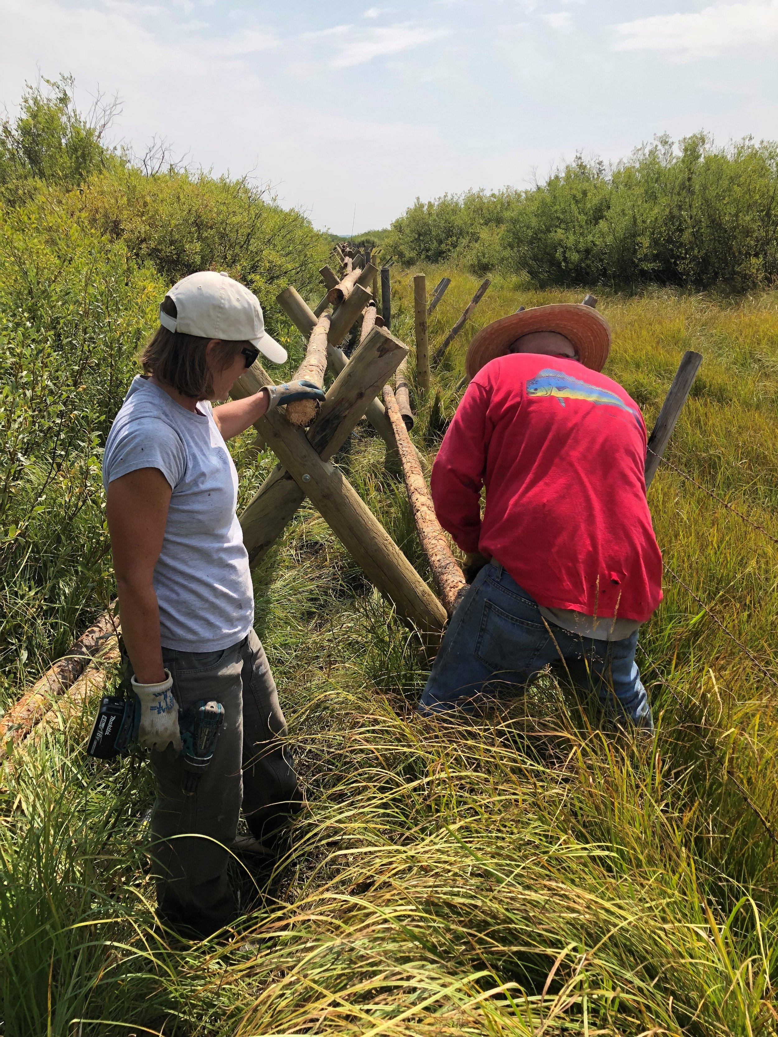 GYC Idaho Conservation Coordinator Kathy Rinaldi (left) and a volunteer install the fence. (Photo GYC.)