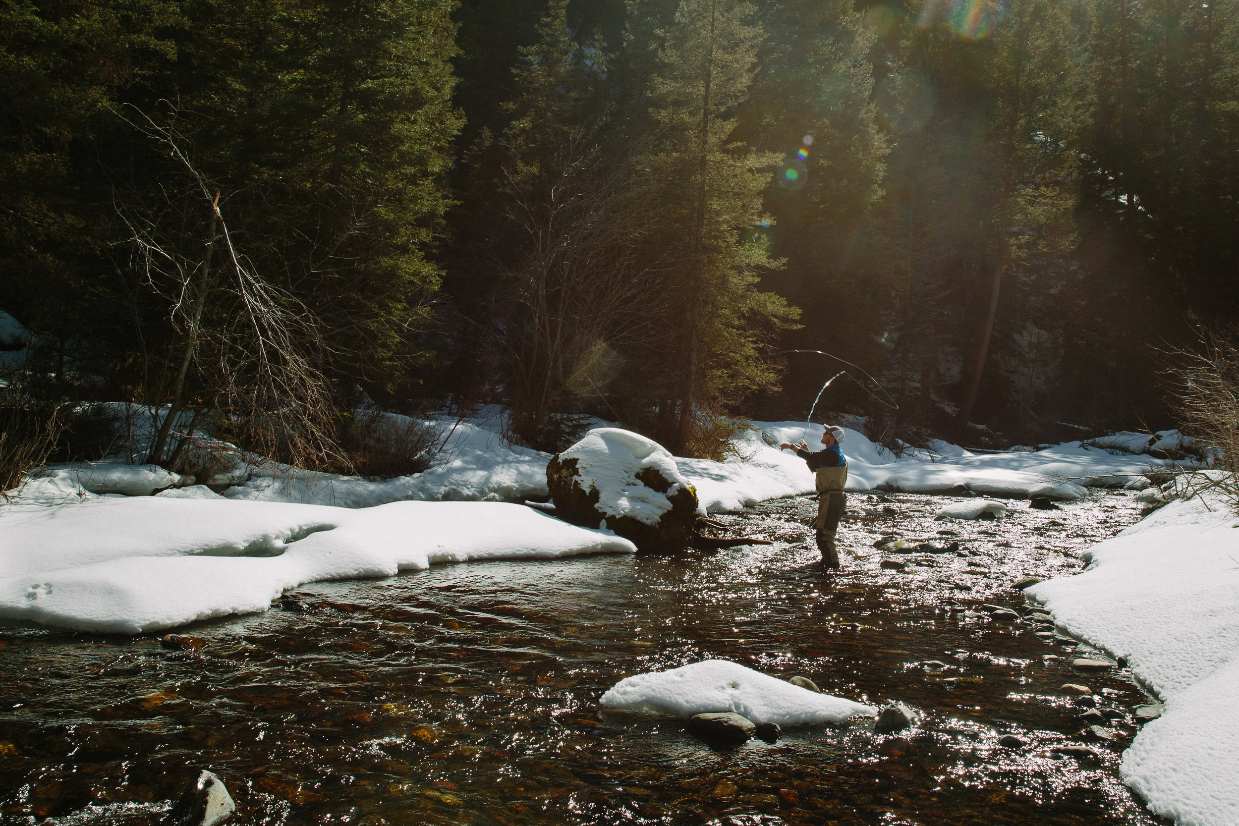 Fly-fishing in the Custer Gallatin National Forest in Montana. (Photo Louise Johns.)