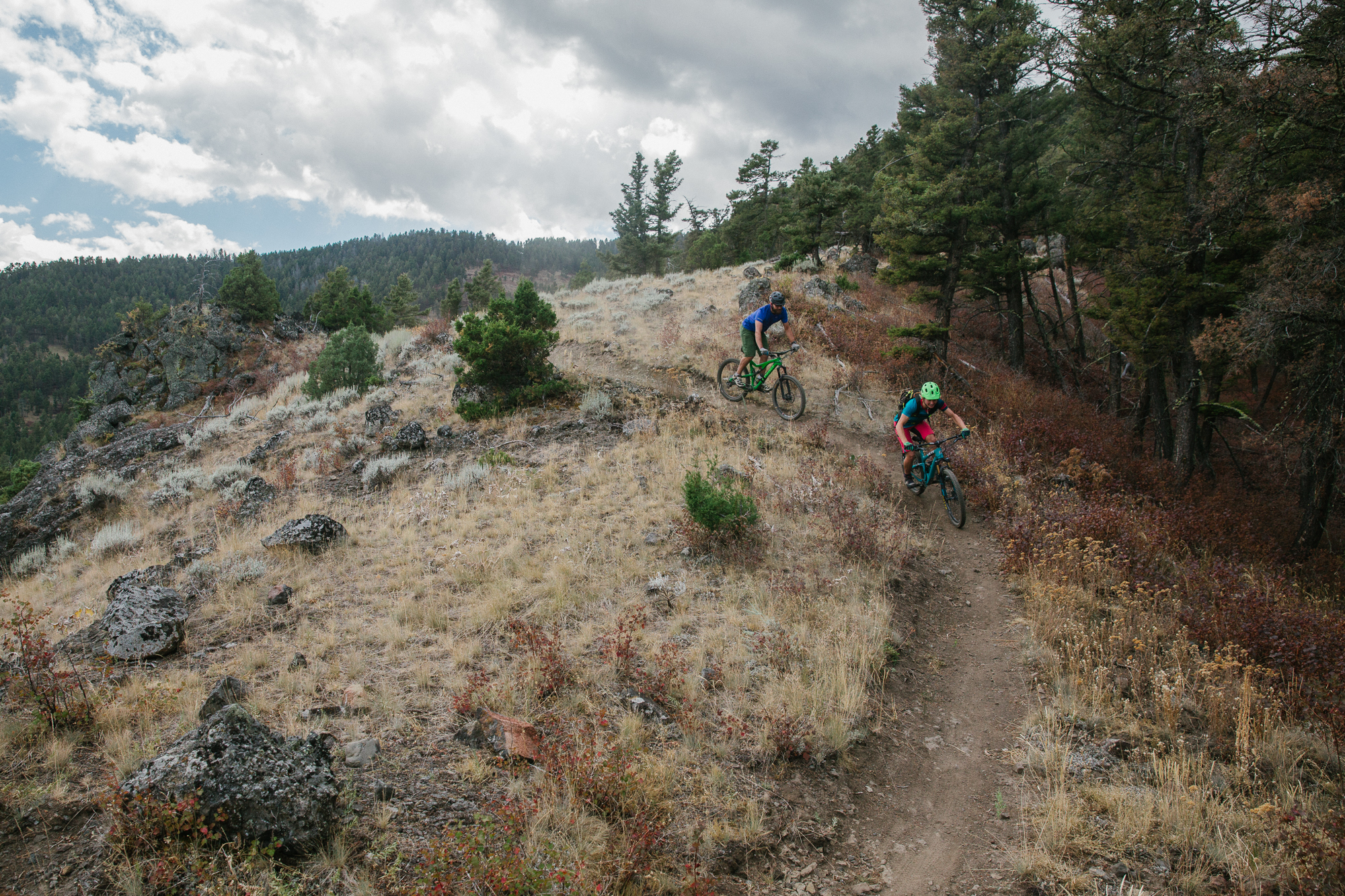 Mountain biking in the Custer Gallatin National Forest in Montana. (Photo Louise Johns.)