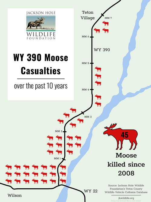 WY-390-Moose-Casualties_smaller.png
