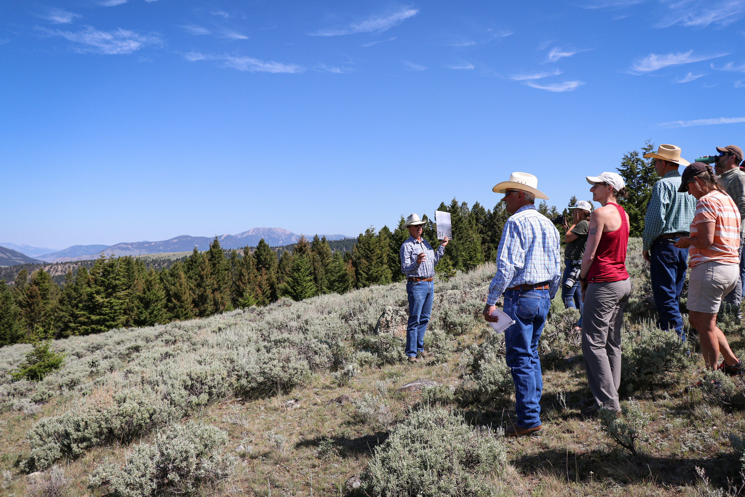 Conservation groups, ranchers, government employees, local representatives, and the media joins the 2019 Ruby Valley Strategic Alliance field trip.  (Photo GYC/Emmy Reed.)