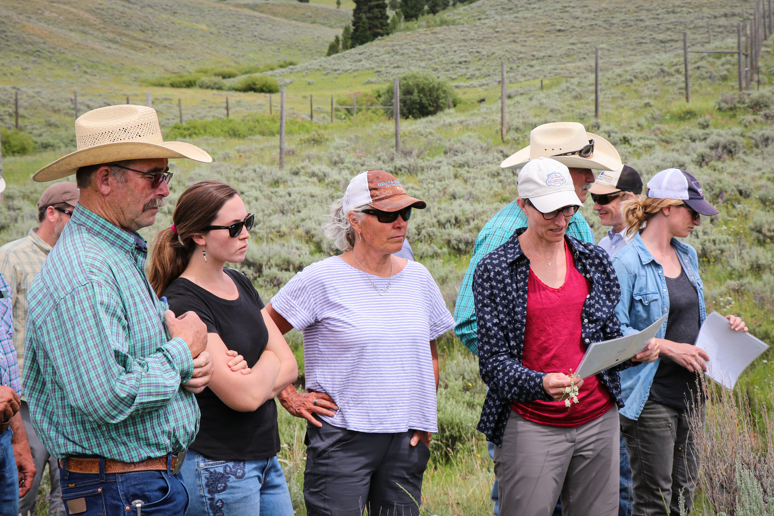(L to R) Rancher Neil Barnosky, GYC's Wildlife Program Associate Brooke Shifrin, GYC's Executive Director Caroline Byrd, and GYC's Montana Conservation Coordinator Darcie Warden review data on the 2019 Ruby Valley Strategic Alliance field trip.  (Photo GYC/Emmy Reed.)