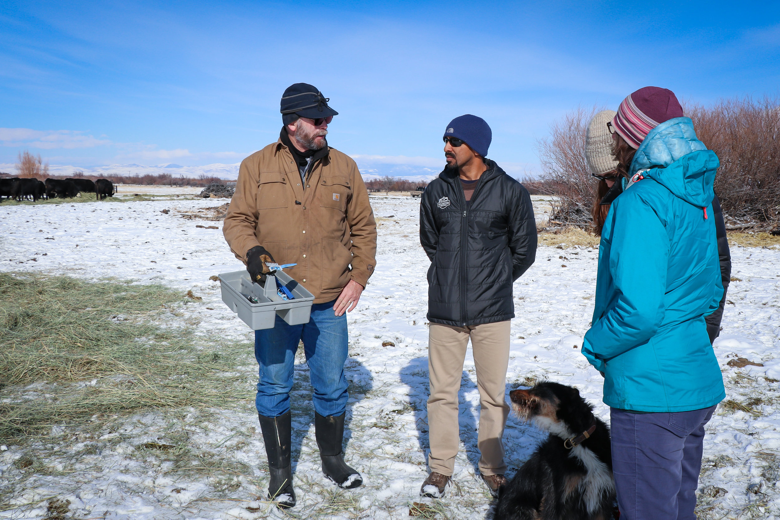 Rancher Neil Barnosky (left) explains to GYC's Siva Sundaresan, Darcie Warden, and Brooke Shifrin the serious effect an especially frigid winter has on his newborn calves.   (Photo GYC/Emmy Reed.)