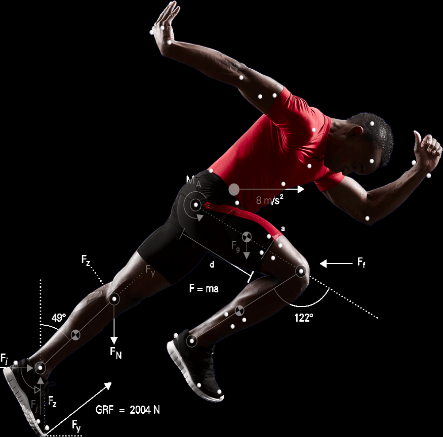 Biomechanics  - The study of movement as it applies to the human body.