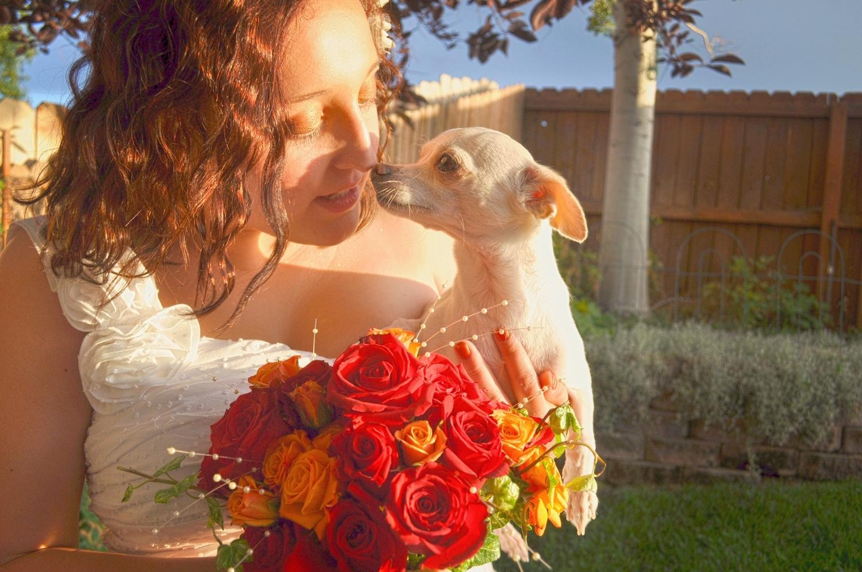 17. Weddings-Puppy-Kiss_Carly-Carpenter.jpg