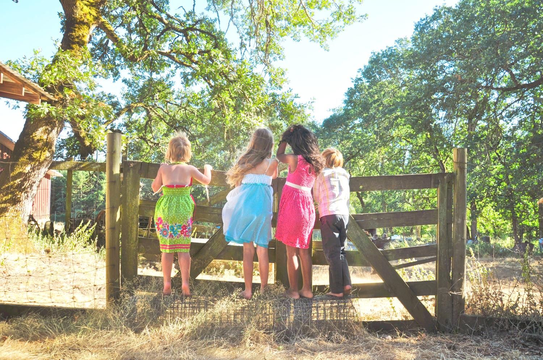 29. Weddings-Children-Farm_Carly-Carpenter.jpg