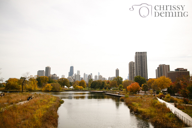 south_pond_chicago_IL_engagement_01