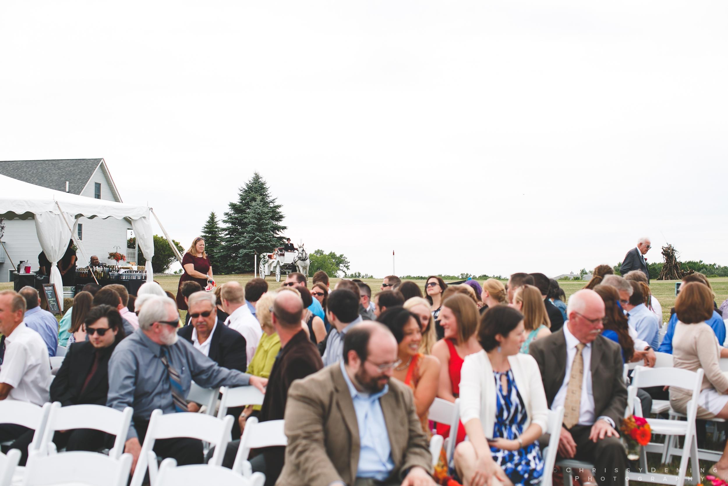 crete_IL_farm_wedding_photographer_0018.jpg