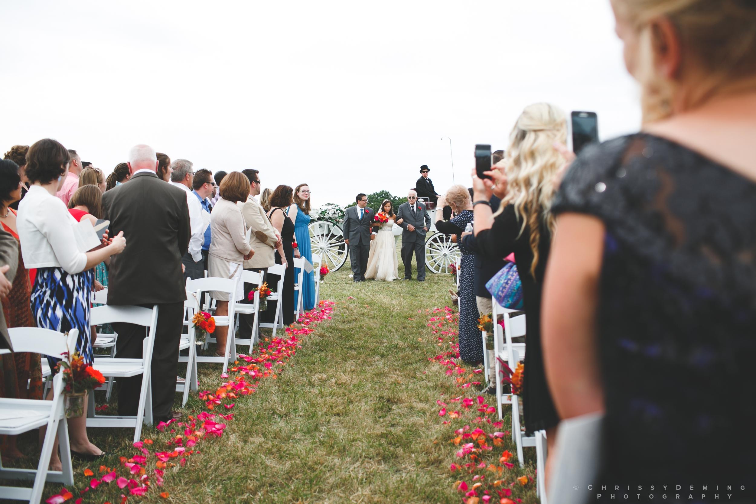 crete_IL_farm_wedding_photographer_0023.jpg
