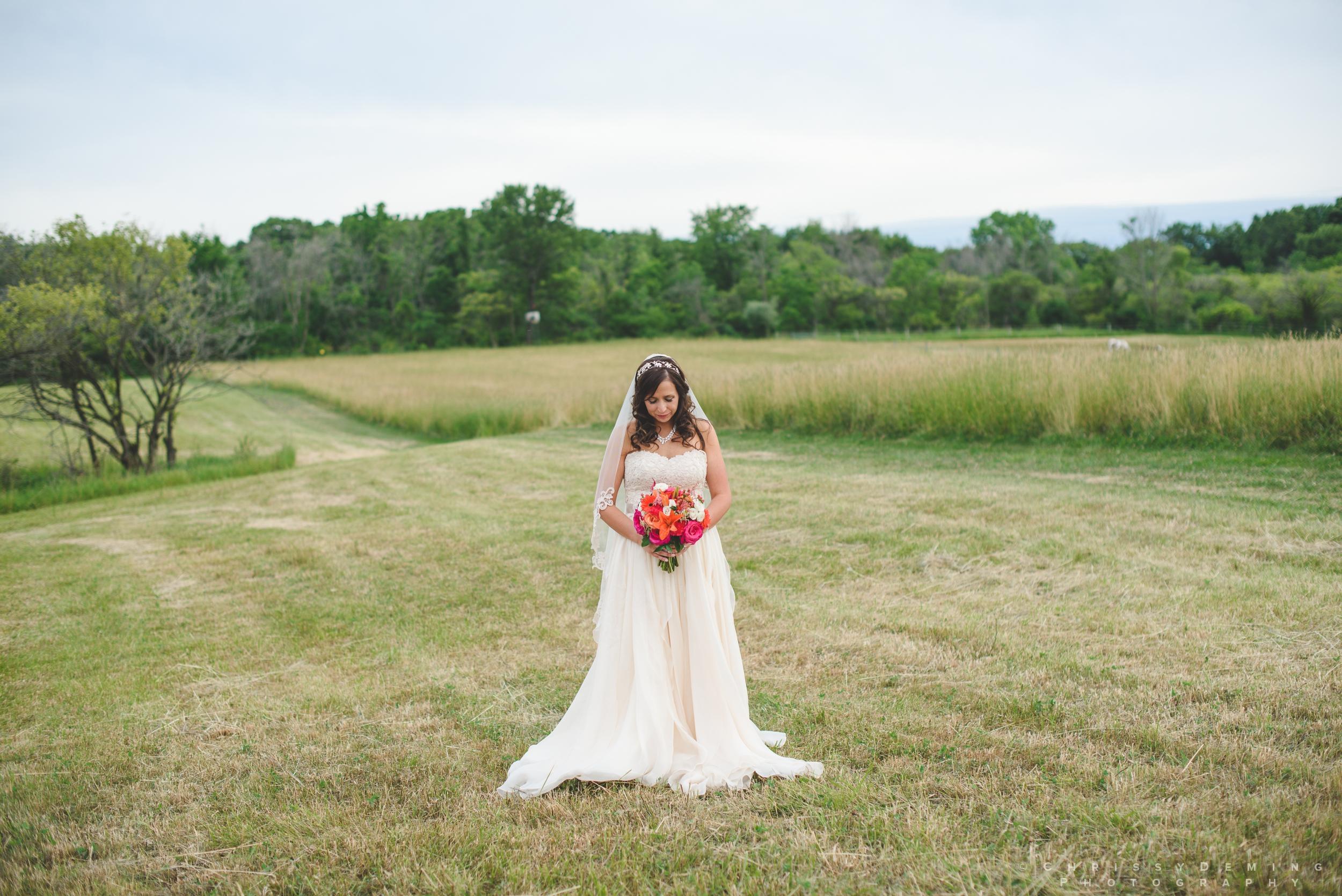 crete_IL_farm_wedding_photographer_0051.jpg