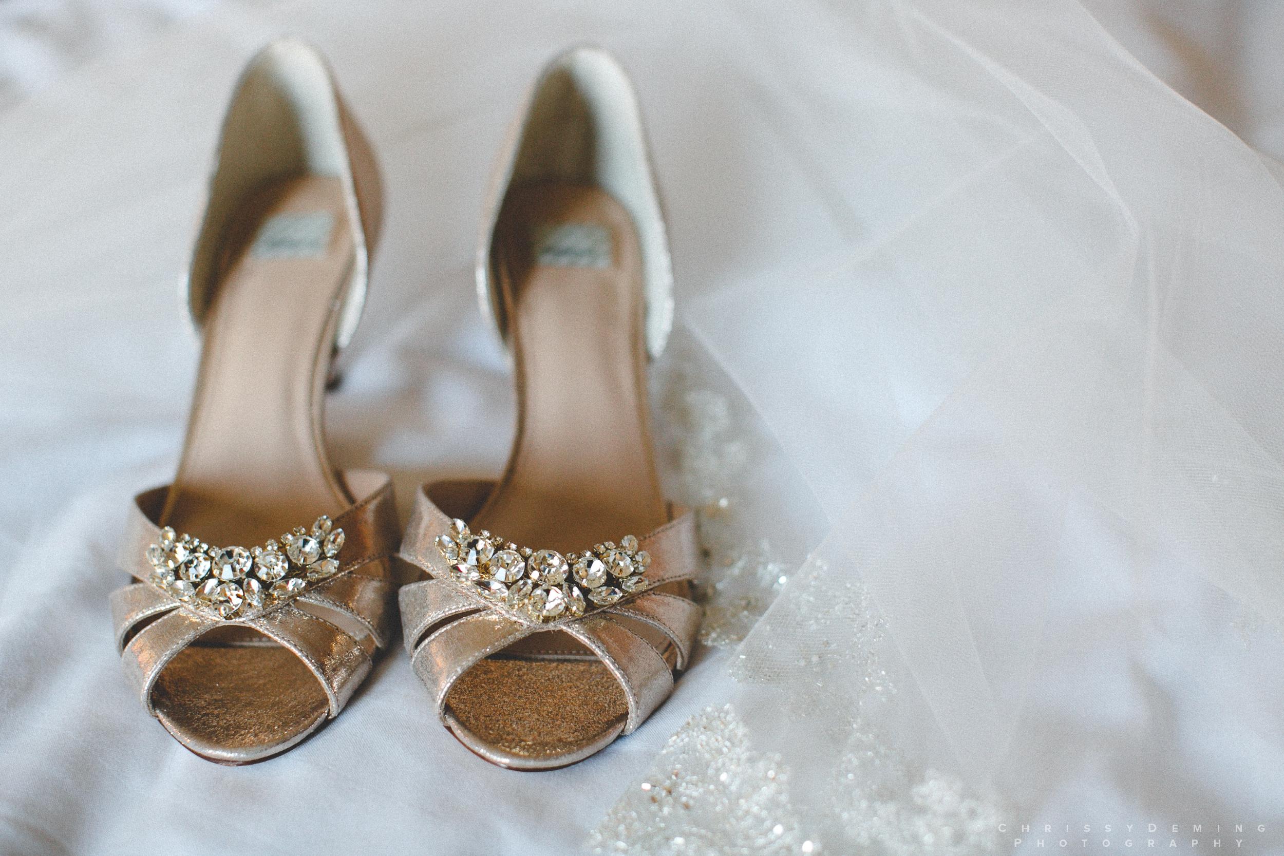 salvatores_chicago_ wedding_photographer_0001.jpg