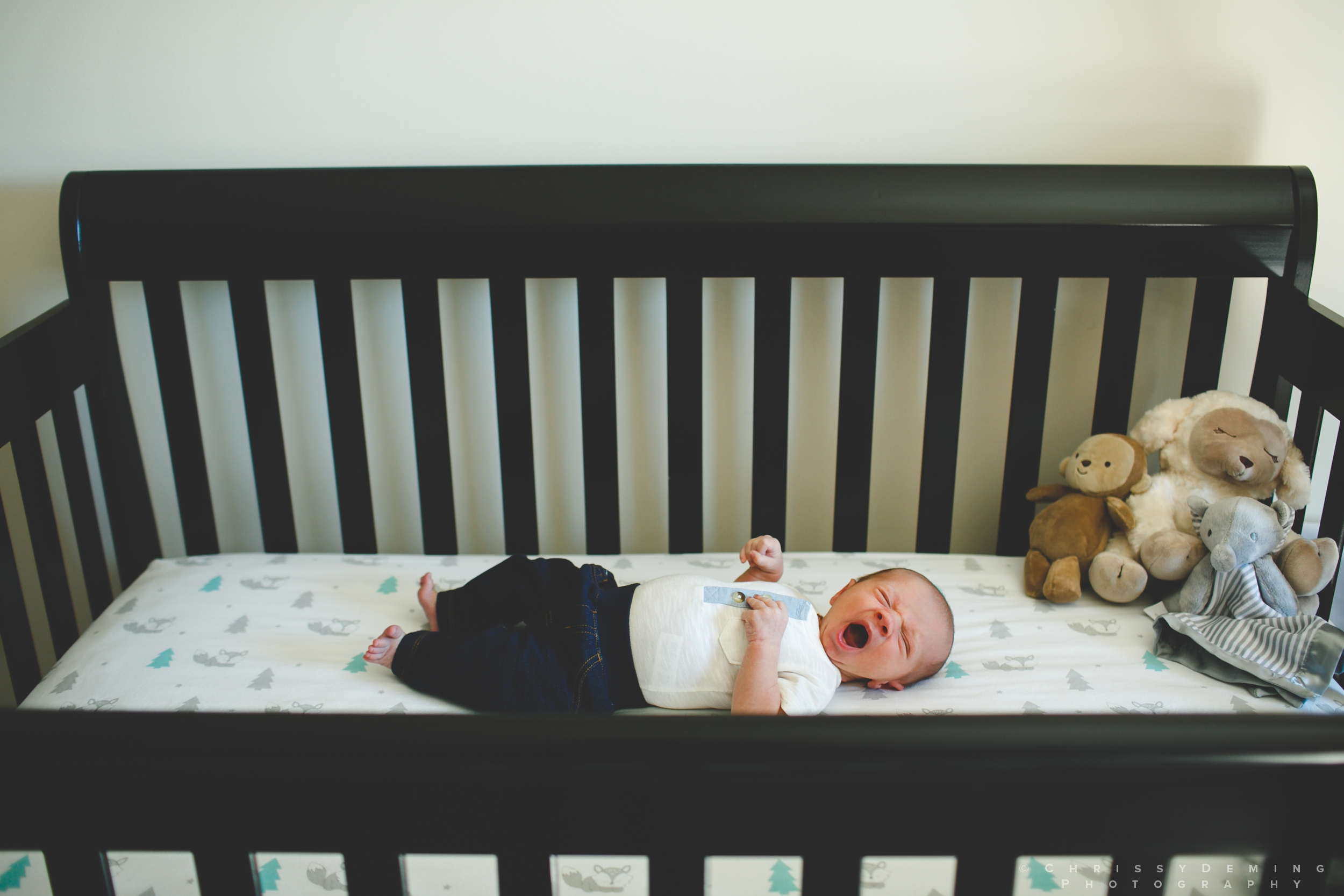 dekalb_IL_newborn_photographer_0017.jpg
