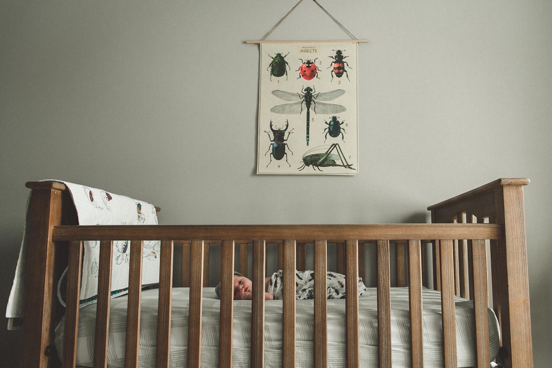 dekalb_sycamore_IL_inhome_newborn_family_photographer_0035.jpg