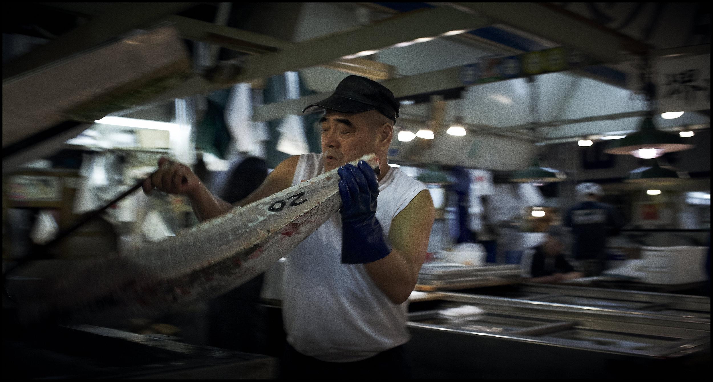 Tsukiji_Fish_Mkt_Tsukiji_08_10_09_-009635.jpg