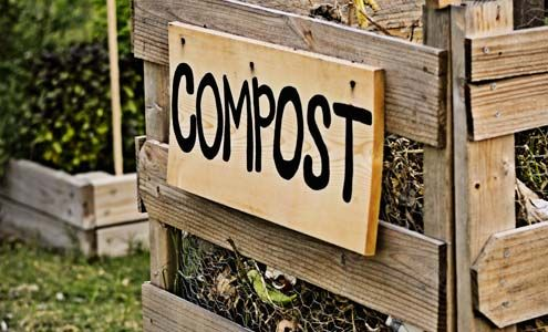 compost pic2.jpg