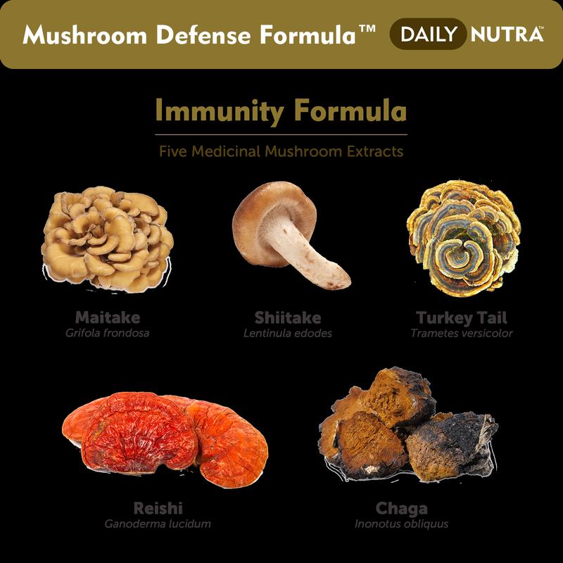 medicinal mushrooms.png