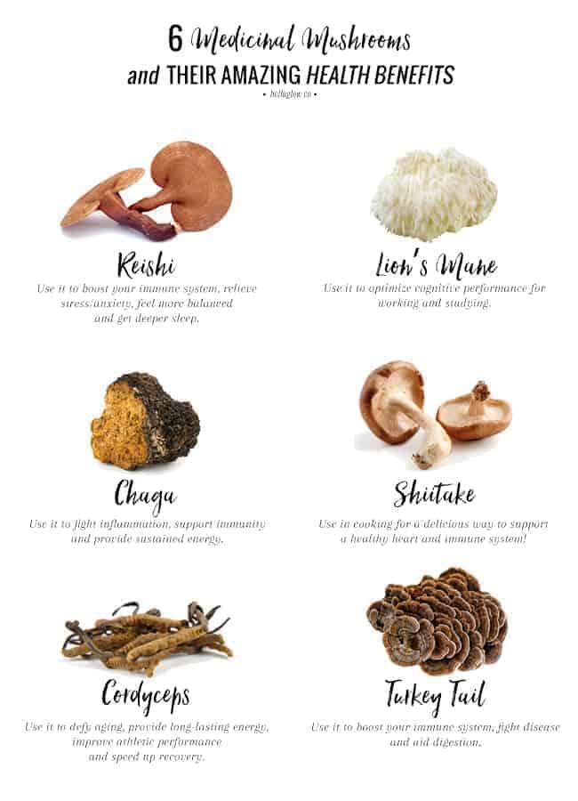 6-medicinal-mushrooms.jpg